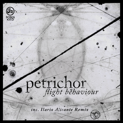 Flight Behaviour (Inc Ilario Alicante Remix)